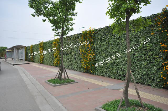 三角形广场植物种植设计